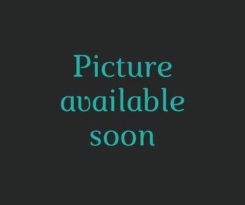 ALTA Filament Oranje 500g SILHOUETTE